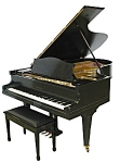Beautiful Black Beckstein Grand Piano 1901