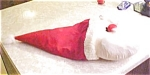 Sugar Loaf Santa Pillow - New