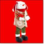 Tyler The Snowman Greeter