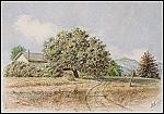 Julius Ludovici (1837-1906; Los Angeles, Ca)
