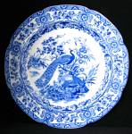 Ornithological Peacock Blue Transfer Plate