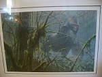 1992 Robert Bateman Titled Intrusion, Mountain Gorilla