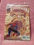 Peter Parker Spider Man Vol. 2, No. 22, 2000