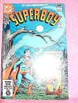 New Adventures Of Superboy Comic Volume 1, No. 21, 1981