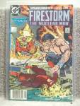 The Fury Of Firestorm No. 81