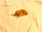 Wade Honey Brown Color Leopard
