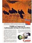 Cannon F-1 Wildlife Waldrapp Ibis Ad