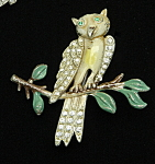 Enameled Owl Brooch