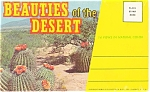 Beauties Of The Desert Souvenir Folder