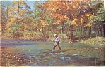 Fishing In A Mountain Stream Postcard