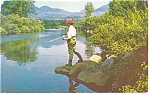 Trout Fishing Ausable River Postcard 1967