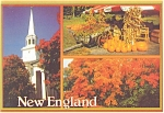 Autumn In New England Postcard