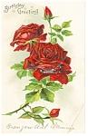 Birthday Greeting Postcard Roses