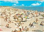 Beach And Bathers Postcard