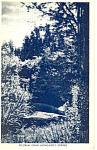 Pilgrim John Howlands Spring Postcard