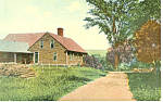 Large Rural Home Scenic Postcard