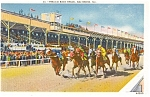 Baltimore Md Pimlico Race Track Postcard