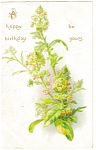 Birthday Postcard Tuck's 1908