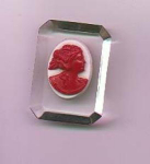 Lucite And Plastic Cameo Pin