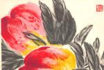 Chinese Color Woodcut Granatapfel