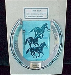 Good Luck Florida Souvenir Racehorse Horseshoe