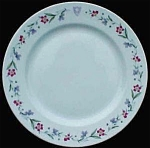 The Homstead - Hot Springs Va Plate - Heinrich China