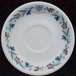The Homstead Hotel Hot Springs Va Saucer- Syracuse China