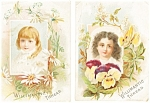 Victorian Advertising Trade Cards Lot (2).