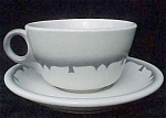 Jackson China Airbrushed Cup And Saucer
