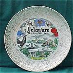 Delaware Souvenir Plate