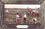 Black Americana Pickin Cotton Southern Postcard