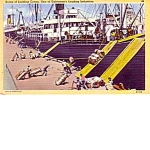 Black Americana Postcard Loading Cotton In Galveston
