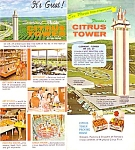 Florida Highest Point See Florida Citrus Tower Souvenir Book