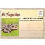 St. Augustine Florida Souvenir Postcard Folder