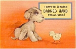 All Occasion Postcard- Cute Puppy