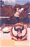 Florida Monkey Jungle Souvenir Post Card