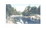 Suwannee River Florida Picture Post Card