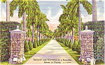 Florida Beautiful Estate Souvenir Post Card