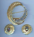 Montana Blue Rhinestone Brooch And Earring Set
