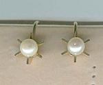 Cultured Pearl Screwback Earrings