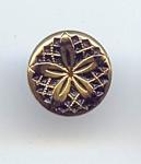 Gold Lustered Black Glass Flower Design Button