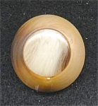 Round Wood And Lucite Button