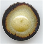 Glowing Faux Tortoise Shell Button
