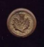1 Piece Brass Thistle Button