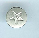 Tiny Silver Star Button
