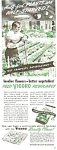 Vigoro Plant Food - Swift & Co. Ad Sheet`