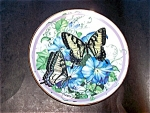 Tiger Swallowtail Butterfly Collection Plate