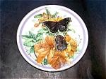 Morning Cloak Butterfly Plate, Sweany