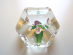 Daniel Salazar Ladyslipper Faceted Paperweight