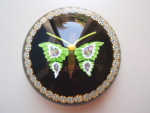 William Manson Butterfly Paperweight